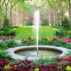 StuyTown   NYC Apartments for Rent